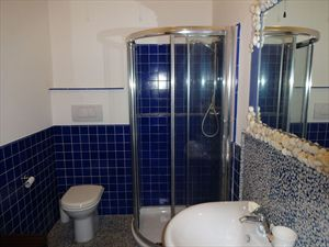 Appartamento Forte dei Marmi  : Bathroom with shower