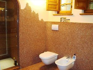 Villa Rosmarino : Bathroom with shower